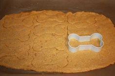 Pumpkin Cookie Dog Treats