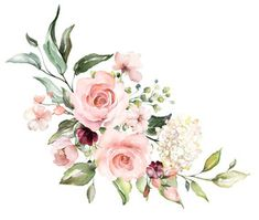 floral illustration, Leaf and buds. Botanic composition for wedding or greeting card. branch of flowers - abstraction roses, hydrangea card illustration Watercolor Images, Stock Photos & Vectors Feather Illustration, Illustration Blume, Floral Illustrations, Botanical Illustration, Watercolor Illustration, Flower Branch, Flower Frame, Watercolor Images, Watercolor Flowers