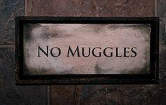 no muggles.
