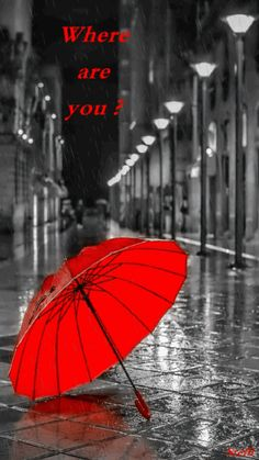 Bildergebnis für black and white photography with red umbrella Walking In The Rain, Singing In The Rain, Splash Photography, Black And White Photography, Rain Photography, Color Splash, Color Pop, Colour, Red Color