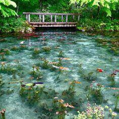 🎨絵画のような美しい景観に魅了💓名もない池・通称 モネの池✨ ・ 印象派を代表するフランスの画家クロード・モネが描いた「睡蓮」の作品によく似ていると、今や話題のスポット🎶 ・ もう信じられないほどの池の水の透明度❗️その美しい光景に感動です😍✨ ・ 日が差し込む光の角度によって、さまざまな表情に変わり、いつ行ってもその美しさに出会えるようですが🌳池に浮かぶ睡蓮の花が咲き誇る時季は6-7月頃✨いつかその絶景に出会ってみたいです😊🎶 ・ #名もなき池 #モネの池 #岐阜県 #関市 #根道神社 #日本の風景 #ことりっぷ岐阜 #日本は美しい #家族に見せたい景色 #もう一度行きたい旅 #緑あふれる Beautiful World, Beautiful Gardens, Beautiful Places, Water Aesthetic, Pretty Photos, Water Lilies, Japanese Art, Mother Nature, Aesthetic Wallpapers