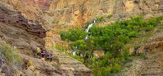 Grand Canyon Beauty.