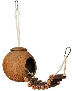 NATURALS COCONUT HIDEAWAY with LADDER - Sm/Med Birds Nest Perch Sugar Gliders