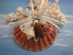 Scallop Shell Ornament Beach Decor Christmas by TheSleepySeahorse