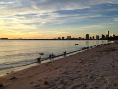 Miami Skyline from Key Biscayne Beach | Flickr - Photo Sharing!