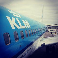 Tôi vừa có một cuộc trò chuyện ngắn với cô tiếp viên hãng hàng không KLM. Nhìn mặt tôi đoán cô cỡ ngoài 40 tuổi. Phải nói thêm một chút là đội ngũ tiếp viên nhiều hãng hàng không phương Tây thường già chứ không trẻ đẹp hình thức như ở châu Á.  Biết tôi đang sống ở Edinburgh, cô hỏi về thành phố ngầm dưới lòng đất ở đó. Cô đã từng đi thăm một lần nhưng không biết nhiều về lịch sử của nó lắm. Tôi đáp lại rằng cũng chỉ biết sơ sơ thôi, tự thấy quá xấu hổ vì sự kém hiểu biết về chính nơi mình…