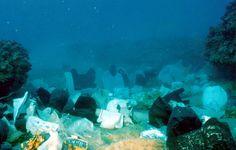 Bilderesultat for plastic bags sea