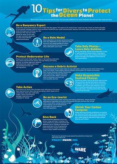 Image result for marine reserves