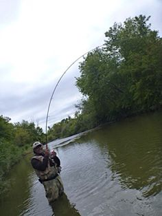 11 Best Fly fishing images | Fly fishing, Fly gear, Fly rods
