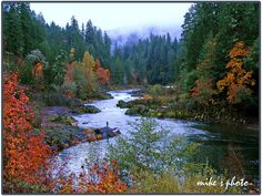 the Umpqua River