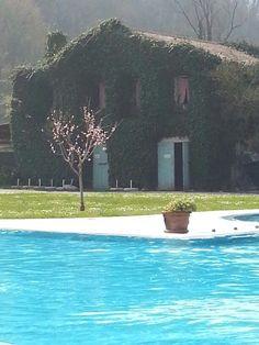 Terme di Montegrotto (Padova) Hotel Preistoriche ♥♡♥