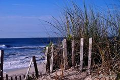 Long Beach Island, Ship Bottom, New Jersey — by Beth Hughes. #beach Down The Shore.... LBI shopping, dining and beautiful Jersey beaches. More family oriented than Seaside.
