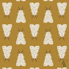 Moth 05 White ermine moth Spilosoma lubricipeda (in italics) 30 Day Drawing Challenge, Some Times, Pretty Cool, Cool Drawings, Inktober, Moth, Butterfly, Patterns, Cool Stuff
