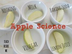 Apple Science Experiment - Teach Beside Me