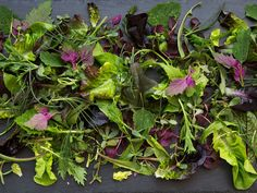 Saveur's Elitist Guide to Salad Greens