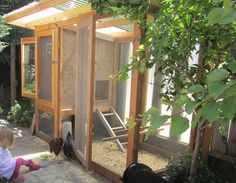 A high-security coop can defend chickens against predators, like skunks and raccoons. But keeping the area inside and outside the coop clean should still be a top priority.