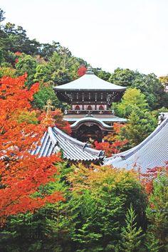 Jour 5 : Miyajima & Mont Misen   Le monde de Tokyobanhbao: Blog Mode gourmand