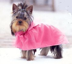 Elastic fastener around the neck & Velcro around the chest. Only the back is covered, paws free. Made by Pampet. Dog Raincoat, Hooded Raincoat, Dog Fashion, Pink Dog, Fashion Boutique, Autumn, Spring, Dogs, Animals