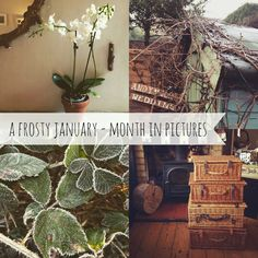 A frosty January - Here's my month in pictures .. http://www.ahandmadecottage.com/2015/01/a-frosty-january-my-month-in-pictures.html