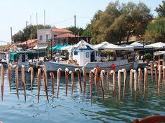 """Retreat i Grækenland """"Yoga, mindfulness & Meditation"""" Vælg mellem 10. - 17. august eller 19. - 26. oktober 2014"""