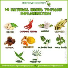 ☛ 10 herbs to fight Inflammation.  Do YOU use Ginger root, Turmeric, Garlic and Cayenne pepper?  Include them in your daily diet. Your body will thank you.  FOR MORE ABOUT TURMERIC:  http://www.stepintomygreenworld.com/greenliving/greenfoods/turmeric-the-superstar-spice/    ✒ Share | Like | Re-pin | Comment