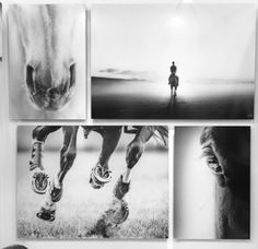 A few of my most popular art pieces this weekend! #pdfineart #tokyointernationalartfair #tiaf  #horseart #equestrianart #showjumping #equestrianlife #equestrianstyle #photoart #hästkonst #fineart #photofineart #horsetagram #instahorse #häst #polopony #poloart #photooftheday #instadaily #fineart_photobw #fineartphotography