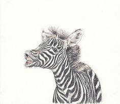 Baby animal print for nursery  Zebra digital download
