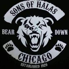 Nfl Bears, Bears Football, Football Memes, Football Art, Football Shirts, Chicago Bears Gear, Chicago Football, Nfl Photos, Bear Photos