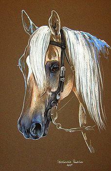 Quarter horse by Paulina Stasikowska Horse Drawings, Animal Drawings, Animal Paintings, Art Drawings, Art Du Papier, Homemade Art, Dressage Horses, Farm Art, Pastel Art
