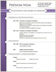 Envie D Un Cv Design Et Tendance Modele De Cv Creatif Le Cv Modele Cv
