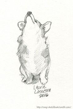 corgi sketchbook