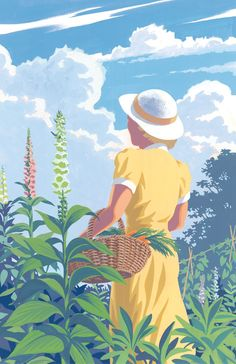 Miss Marple Short Stories   Folio Illustrated Book - Illust. Andrew Davidson
