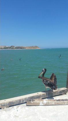 Los Organos Beach en Piura, Peru