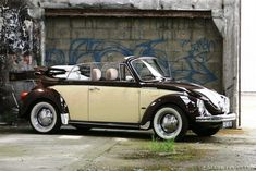 old vw beatle