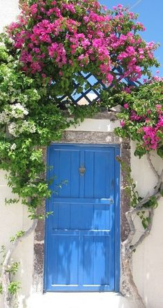 blue door, pink and white flowers