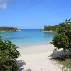 Nature enthusiasts will revel in the scenery on this white-sand beach, located on the northeast end of the island (right near the airport, and only a 20 minute drive to the fabulous Rosewood Tucker's Point hotel) and accessible only on foot. It's one of a