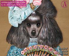 Poodle lady. #poodle