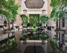 Japanese interior studio Bond Design teamed up with international craftspeople and artisans to create a breath-taking urban oasis for Shangri-La Singapore. Shangri La Singapore, Shangri La Hotel, Home Luxury, Luxury Spa, Design Hotel Paris, Architecture Design, Brooklyn, Sands Hotel, Interior Design Singapore
