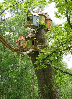 How To Build A Treehouse ? This Tree House Design Ideas For Adult and Kids, Simple and easy. can also be used as a place (to live in), Amazing Tiny treehouse kids, Architecture Modern Luxury treehouse interior cozy Backyard Small treehouse masters Cool Tree Houses, Fairy Houses, Play Houses, House Trees, Doll Houses, Magical Tree, In The Tree, My House, Gnome House