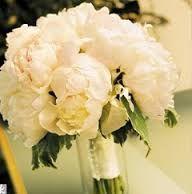 Risultati immagini per bouquet enzo miccio