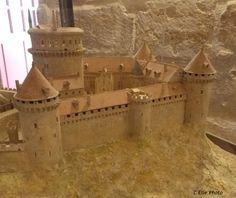 Les vignes de Coucy, plantées par l'office du tourisme, en témoignage du passé vinicole de la cité. – à Coucy-le-Château-Auffrique.