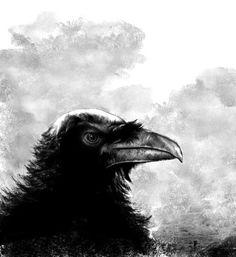 Raven's eye by Johann Valentin Andree