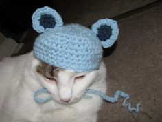 Blue Teddy Bear Hat for Small Dogs and Cats Handmade Crochet   DefiantCreations - Pets on ArtFire