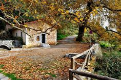 Dimitsana Arcadia, Peloponese autumn in south Greece. Arcadia Greece, Winter Destinations, Greek Islands, Planet Earth, Old Houses, Grape Vines, Beautiful Places, Places To Visit, Cabin