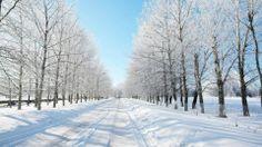 new-york-winter