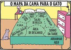QUEM RECONHECE ESSE MAPA? kkk <3 #gato #amogatos #gatinho #petmeupet #petshop #gatofofo