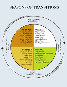 Diagram of the seasons of transitions by Sheryl Paul.