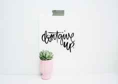 'Don't Give Up' Print www.beckandlola.com @beckandlola