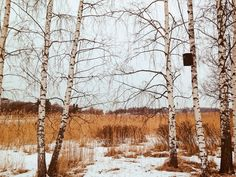 VSCO - Finland, Helsinki  | dediko