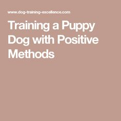 An Kety Pet Care. Tried And True Ways Of Effective Puppy Training. Good training will leave you and your pooch feeling happier. This article has lots of helpful advice about training your dog Dog Commands Training, Service Dog Training, Dog Training Methods, Basic Dog Training, Puppy Training Tips, Training Dogs, Dog Obedience Classes, Puppy Care, Dog Care